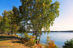 Herbst in dem See Stockbild