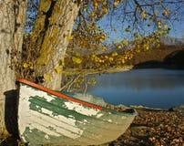 Herbst in dem See Stockbilder
