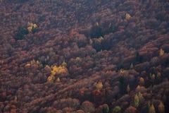 Herbst in den Bergen Lizenzfreies Stockbild