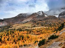 Herbst in den Dolomit Lizenzfreie Stockfotografie