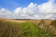 Herbst in den Yorkshire-Wolds Stockbilder