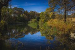 Herbst an der Eiche Glen Preserve lizenzfreie stockfotografie