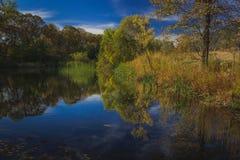 Herbst an der Eiche Glen Preserve Stockfotografie