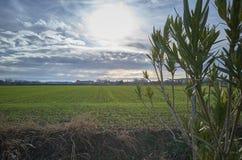 Herbst in der Landschaft Lizenzfreie Stockbilder