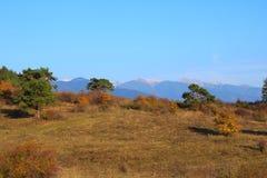 Herbst in der Natur Lizenzfreies Stockfoto