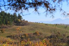 Herbst in der Natur Stockfotografie