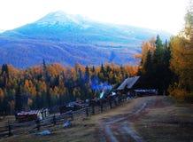Herbst, der Rauch des Waldes Stockfoto