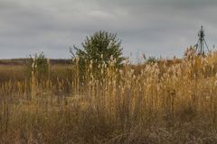 Herbst in der Tavri-Steppe Stockfoto