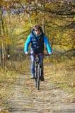 Herbst, der in Wald radfährt Lizenzfreie Stockfotografie