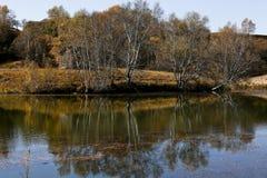 Herbst in der Wiese und in der Reflexion Stockfotos