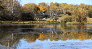 Herbst in der Wiese und in der Reflexion Lizenzfreie Stockbilder