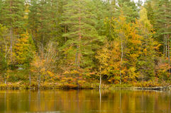Herbst durch den See Lizenzfreies Stockfoto