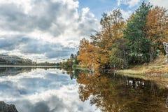 Herbst durch den See stockbild