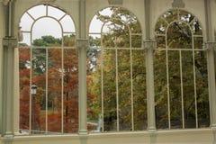 Herbst durch Fenster Stockbild