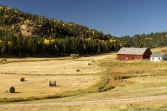 Herbst an einer Colorado-Ranch lizenzfreie stockfotos