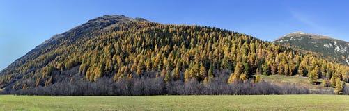 Herbst in Engadina, Switxerland Stockfotos