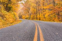 Herbst entlang blauen Ridge Parkway stockbild