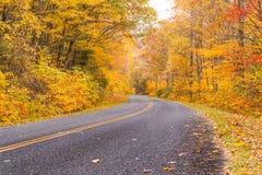 Herbst entlang blauen Ridge Parkway lizenzfreies stockfoto