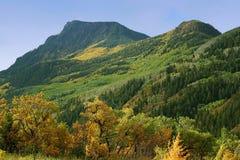 Herbst entlang Bulldogge-Nebenfluss-Spur Stockbild