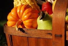 Herbst-Ernte stockbilder