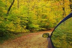 Herbst-Farben Lizenzfreie Stockfotos