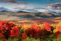 Herbst-Farben Lizenzfreies Stockbild