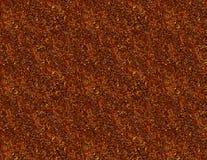 Herbst-Farben lizenzfreie stockbilder