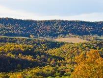 Herbst-Farben der Natur Stockbild
