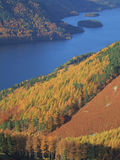 Herbst-Farben durch Thirlmere Stockbild