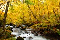 Herbst-Farben von Oirase Fluss Lizenzfreie Stockfotos