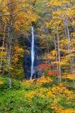 Herbst-Farben von Oirase Fluss Stockfotos