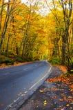 Herbst-Farben von Oirase Fluss Lizenzfreie Stockfotografie