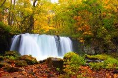 Herbst-Farben von Oirase Fluss Lizenzfreies Stockbild