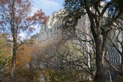 Herbst farbige Bäume mit Gebäuden hinter ihnen Stockfoto