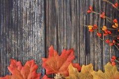 Herbst farbige Ebenenlage lizenzfreie stockbilder