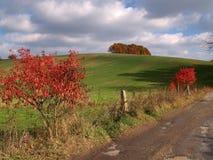 Herbst-Feld Lizenzfreie Stockfotografie