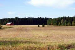Herbst-Feld in Finnland Stockbild