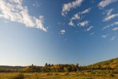 Herbst-Feld und Bäume Stockfotos