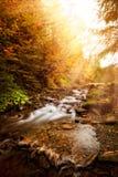 Herbst-Fluss Lizenzfreies Stockbild
