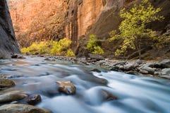 Herbst-Fluss Stockbild