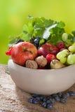 Herbst-Fruchtschüssel und -reben Stockbild