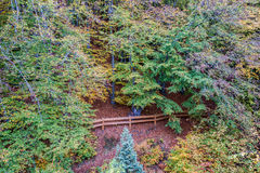 Herbst in Gdynia Lizenzfreie Stockfotos