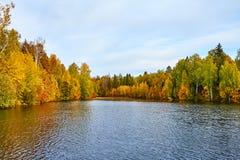 Herbst, gelbe Bäume, Wasser, Lizenzfreie Stockbilder