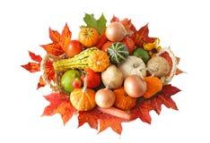 Herbst-Gemüse Lizenzfreies Stockbild