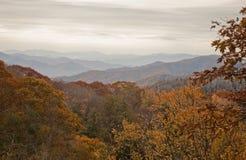 Herbst, großes rauchiges Mtns NP Stockbilder