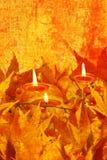 Herbst grunge Hintergrund Stockfotografie