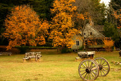 Herbst-Haus Stockbilder