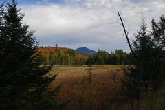 Herbst/Herbstlaub in der Adirondack-Gebirgshohe Spitzen-Region Stockfotos