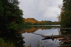 Herbst/Herbstlaub in der Adirondack-Gebirgshohe Spitzen-Region Lizenzfreie Stockfotografie
