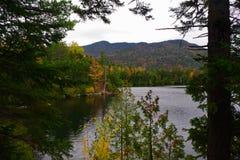 Herbst/Herbstlaub in der Adirondack-Gebirgshohe Spitzen-Region Stockbild